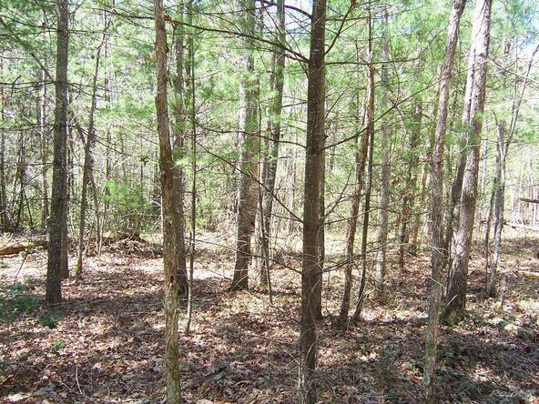 Spruce Creek, Jamestown, TN 38556 Photo 2