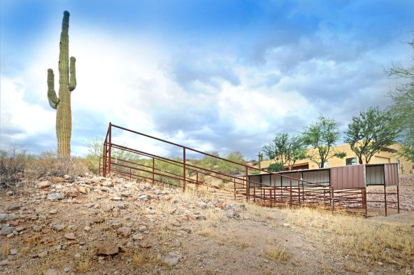 13529 N. Blue Coyote Trail, Fort Mcdowell, AZ 85264 Photo 42