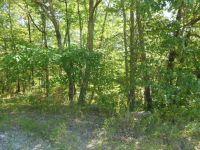 Home for sale: 0 Blue Sewanee Rd., Dunlap, TN 37327