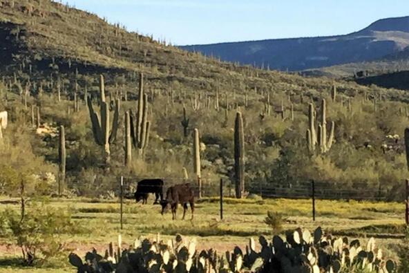 2726 E. Saddle Mountain Rd., Cave Creek, AZ 85331 Photo 39