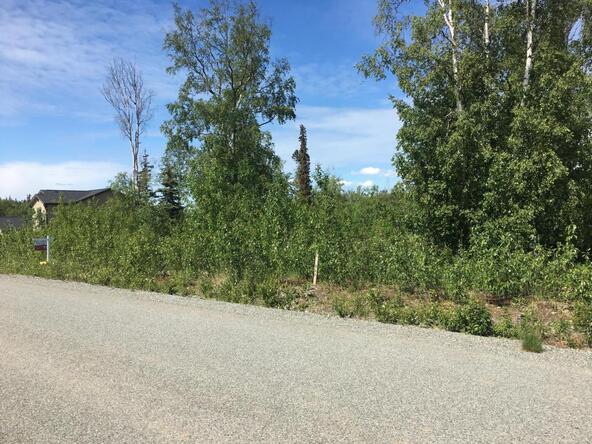 9289 E. Spring Creek Cir., Palmer, AK 99645 Photo 3