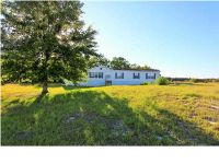 Home for sale: 1098 Calf Barn Rd., Wewahitchka, FL 32465