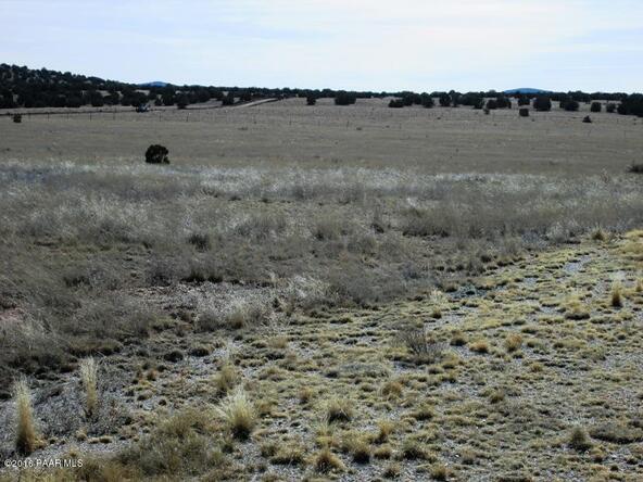 24101 W. Crooked Horse Trail, Seligman, AZ 86337 Photo 10
