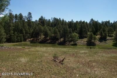 195 Sheep Springs Rd., Happy Jack, AZ 86024 Photo 1