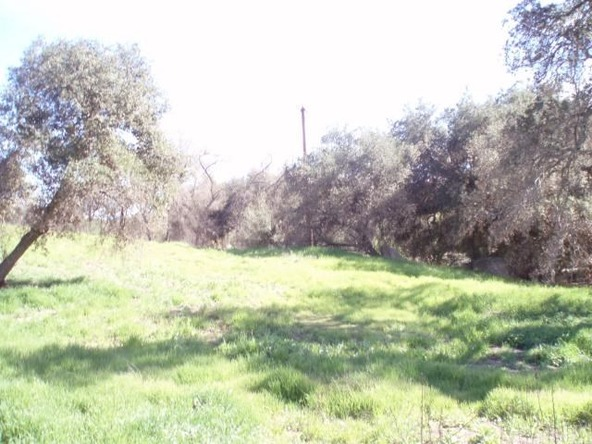 41200 Deportola Rd., Temecula, CA 92592 Photo 15