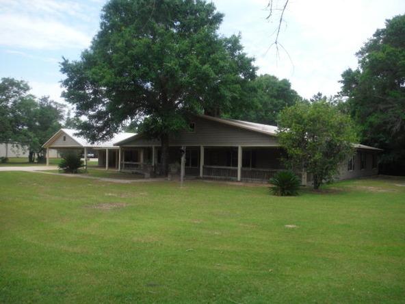9175 County Rd. 99, Lillian, AL 36549 Photo 1