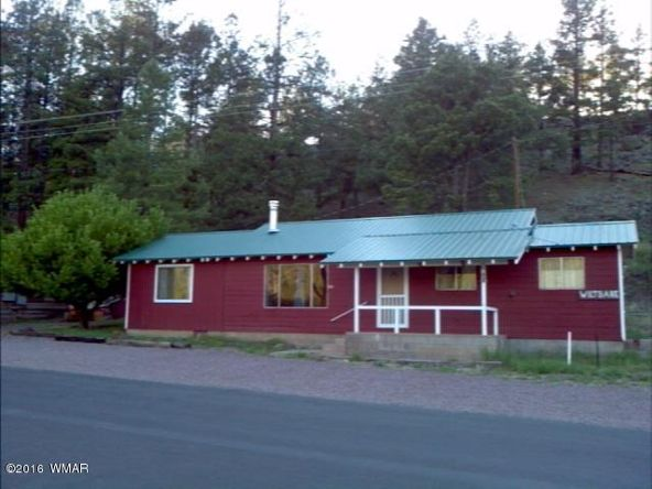 119 County Rd. 1120, Greer, AZ 85927 Photo 1