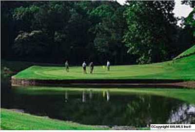 36 Augusta Rd., Guntersville, AL 35976 Photo 3
