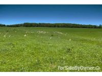 Home for sale: Worley Rd. / Hwy. F, Farmington, MO 63640