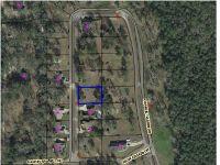 Home for sale: 13 Charlie Gaskin Dr., Wewahitchka, FL 32465