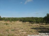 Home for sale: 31440 Beck Rd., Bulverde, TX 78163