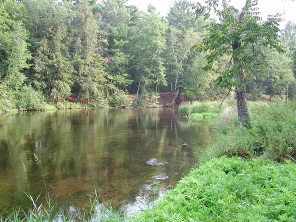 Out Lot 3 & 4 Pinery Rd., Hatley, WI 54440 Photo 4