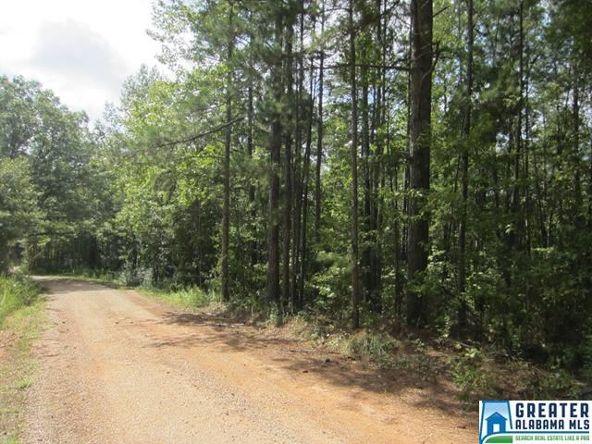 3.91 Acres Thomas Ln., Ashland, AL 36251 Photo 2