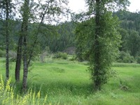 Home for sale: Lot 5 Old Railroad Rd. Grade R, Calder, ID 83804
