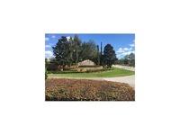 Home for sale: 23803 Milford Dr., Eustis, FL 32736