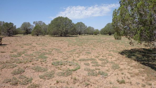 261 Juniperwood Ranch Lot 261, Ash Fork, AZ 86320 Photo 7