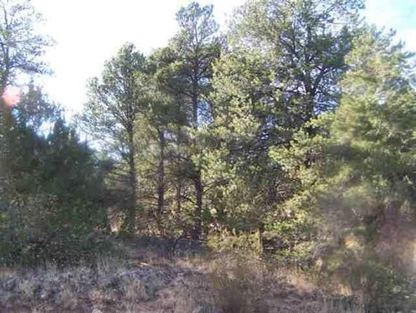 3356 Apache Dr., Overgaard, AZ 85933 Photo 6