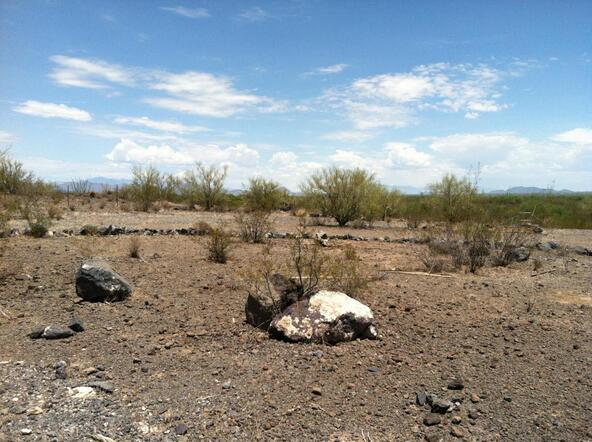 7730 Atkinson S., Tucson, AZ 85735 Photo 17