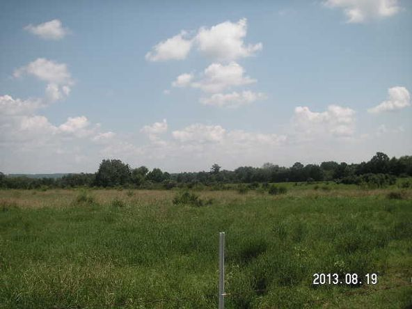 40 Acres M/L, Clarksville, AR 72830 Photo 5