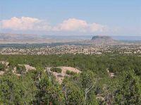Home for sale: Lot C Near Old Buckman Rd. & Rio Grande, Santa Fe, NM 87501