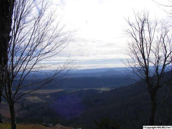 9416 County Rd. 103, Mentone, AL 35984 Photo 8