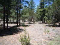 Home for sale: 2974 Lookout Ln., Overgaard, AZ 85933