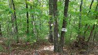 Home for sale: Lot 20a Rooks Rd., Mineral Bluff, GA 30559