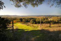 Home for sale: 500 Artisan Cir., Geyserville, CA 95441