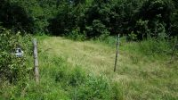 Home for sale: Rodeo, Belleville, AR 72824