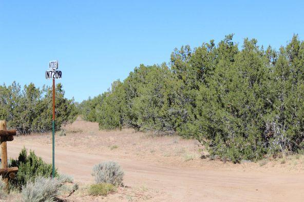 7209 N. Hwy. 191 --, Sanders, AZ 86512 Photo 4