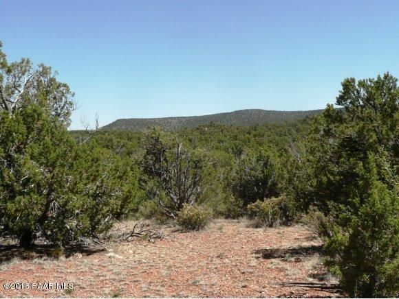 1024 Sierra Verde Ranch, Seligman, AZ 86337 Photo 2