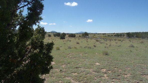 11116 S. State Route 64, Williams, AZ 86046 Photo 1
