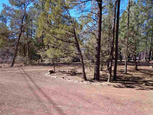 3530 Petes Retreat, Lakeside, AZ 85929 Photo 7