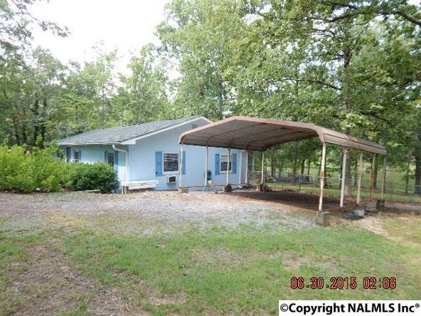 95 County Rd. 604, Cedar Bluff, AL 35959 Photo 38