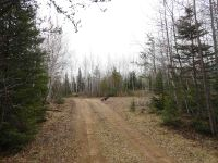 Home for sale: 40 Acres Off North Helen Lake, Republic, MI 49879