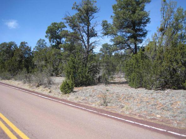 2901 Buckskin Rd., Overgaard, AZ 85933 Photo 3