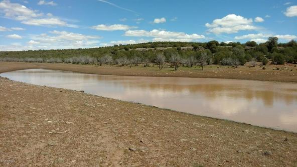 243 N. Juniperwood Ranch --, Ash Fork, AZ 86320 Photo 11