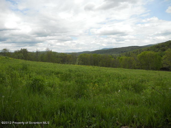 19 Walnut Ridge Dr., Mehoopany, PA 18629 Photo 5