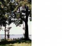Home for sale: 9 Eagle Lake Shore Rd., Vicksburg, MS 39183