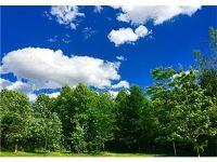 Home for sale: 000 Canandaigua Rd., Macedon, NY 14502