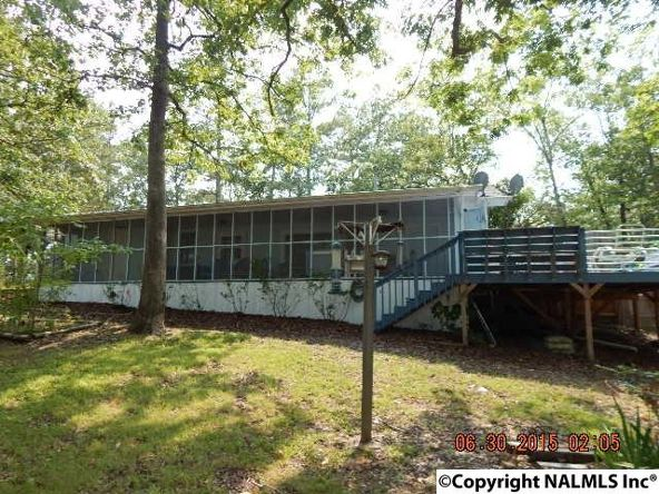 95 County Rd. 604, Cedar Bluff, AL 35959 Photo 3