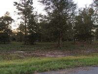 Home for sale: Lot 38 Jamie's. Way, Jesup, GA 31545