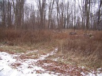 Home for sale: Lot #1 Thorn Apple Dr., Wittenberg, WI 54499