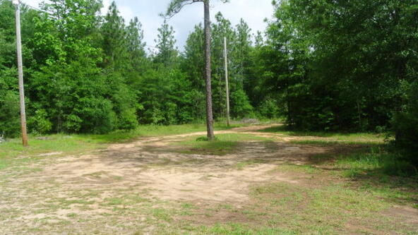 10732 Huckabaa Rd., Red Level, AL 36474 Photo 14