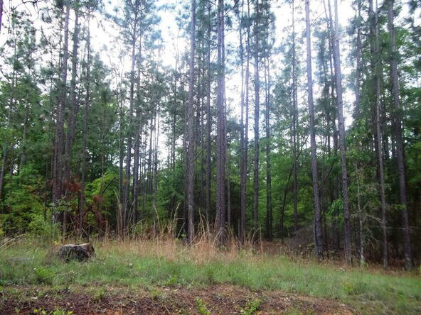 500 South Rd., Atmore, AL 36502 Photo 7