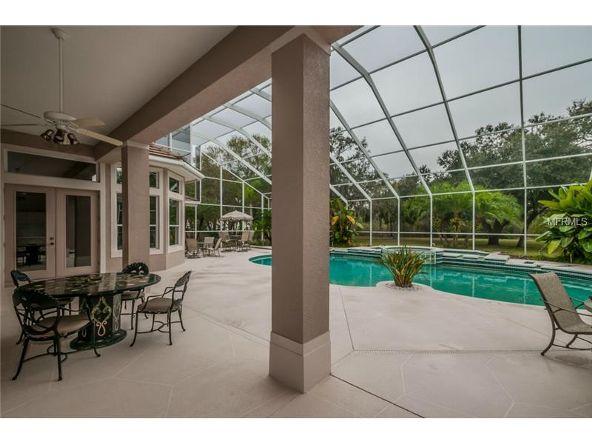 2270 N. Highland Avenue, Tarpon Springs, FL 34688 Photo 15