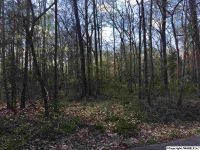 Home for sale: Lot #13 Woodland Terrace, Moulton, AL 35650