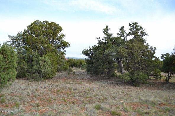 1524 Rocky Top Dr., Heber, AZ 85928 Photo 17