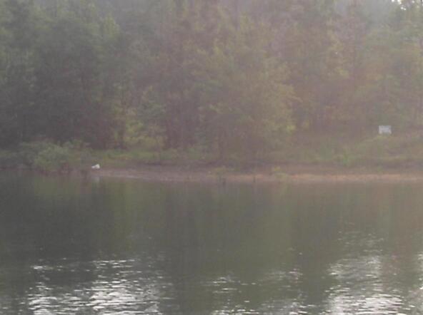 212 Cord 907, Crane Hill, AL 35053 Photo 1