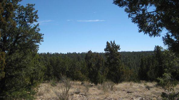 2955 Lodgepole Rd., Overgaard, AZ 85933 Photo 2